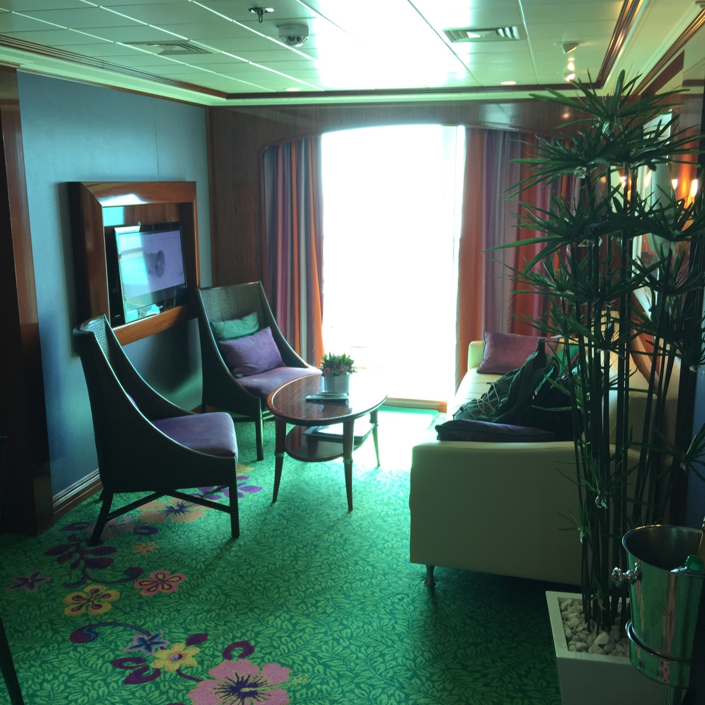 Norwegian Jade Professional Photo