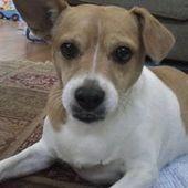erinford2001.yahoo.com