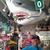 sharkness13
