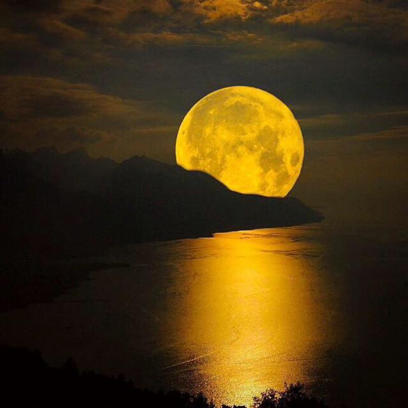 moonlightmagi