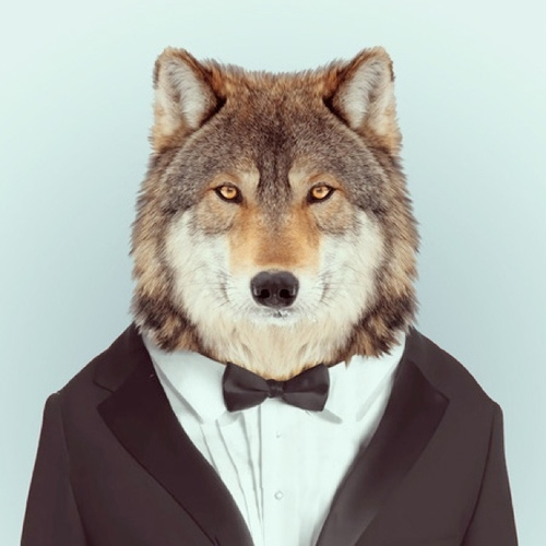 cyberwolf35