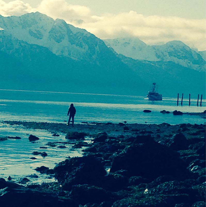 Alaskaihdes