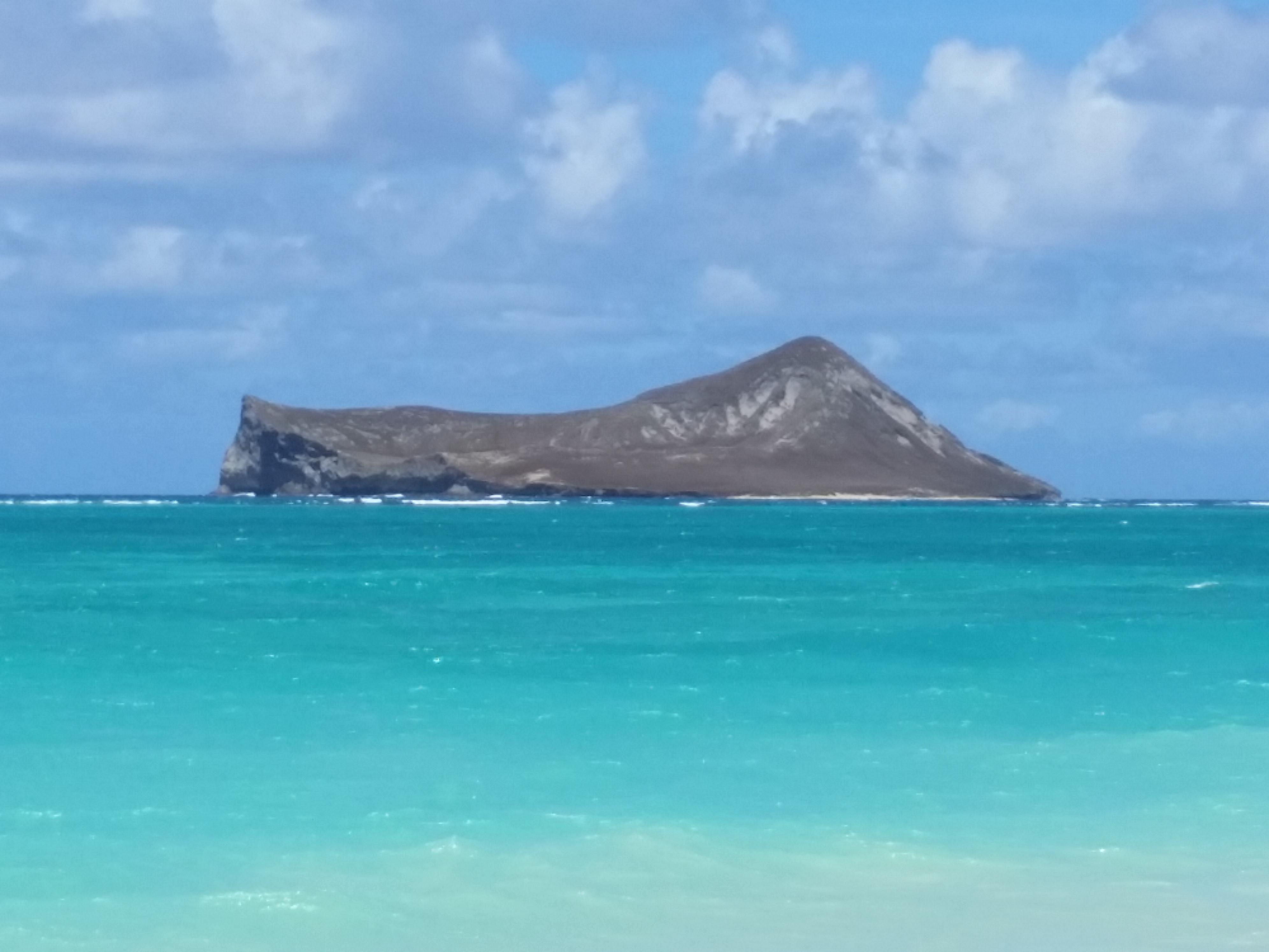 HawaiinxStyle