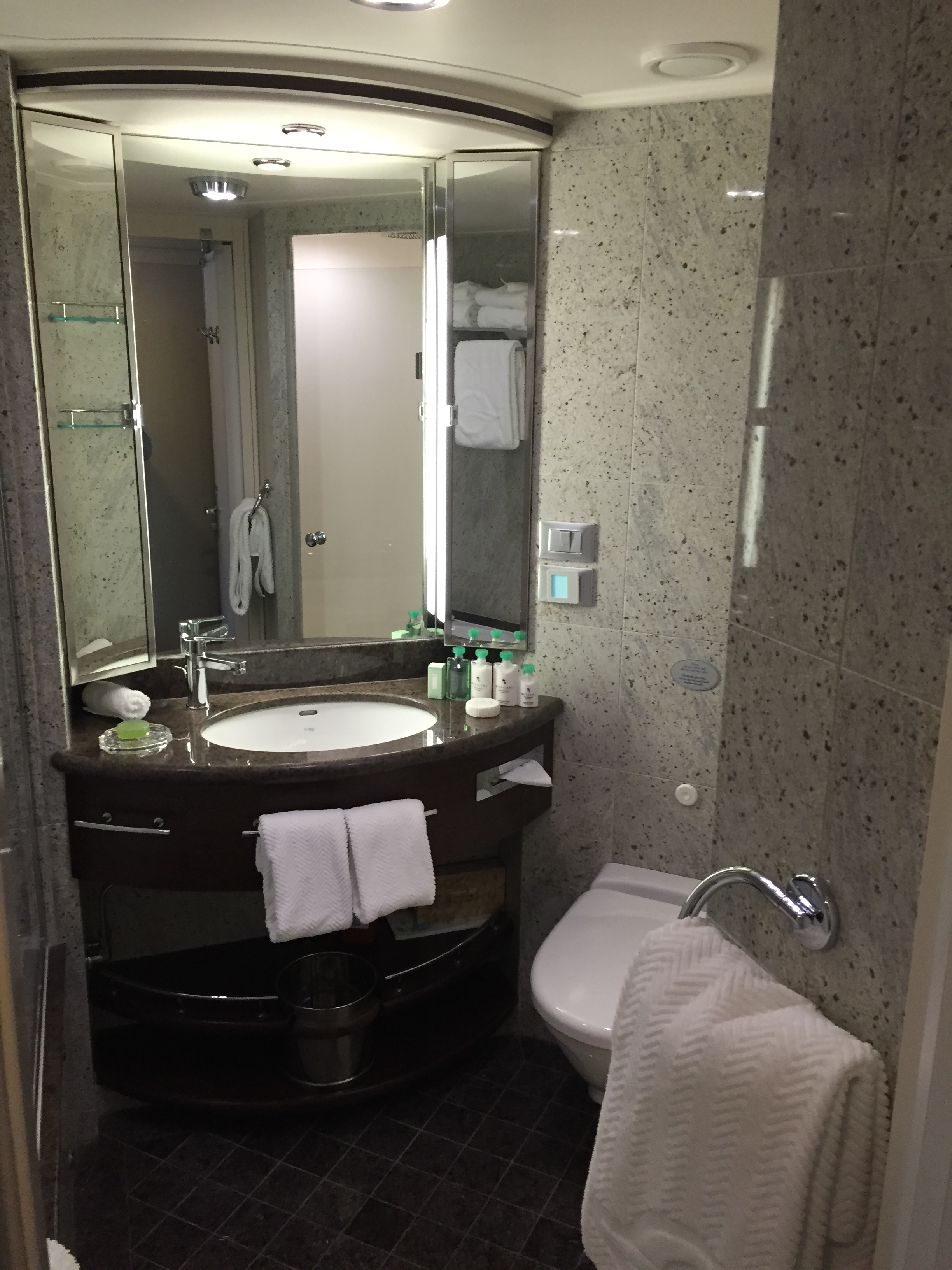 1st time oceania good ports but no sea days riviera for Riviera bathrooms