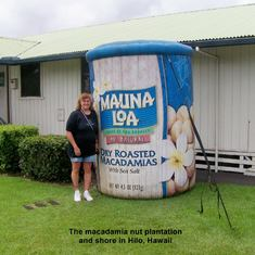 At the Mauna Loa Macadamia Factory in Hilo