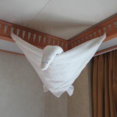 Towel Magic
