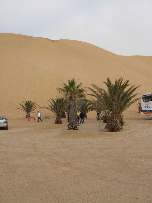 Namibia, most and highest sand dunes on earth.  - Prinsendam