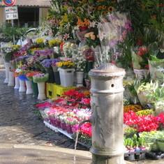 Civitavecchia (Rome), Italy - Street scence in Trastevere, Rome, Italy