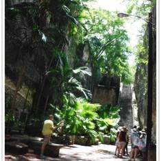 Queen's Staircase.  Nassau.