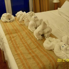Towel animals.