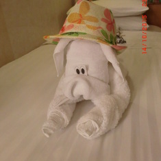 Towel doggie.