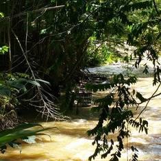 Falmouth Jamaica Martha Brae River