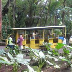Banana Tours on St Kitts - excellent value.