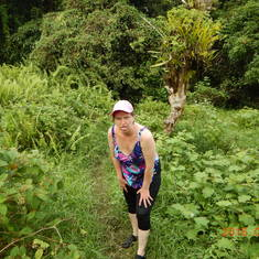 Dominica, rain forest hike to Sari Sari Falls. We survived!!!