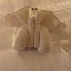 Towel art.