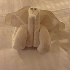 Towel art.