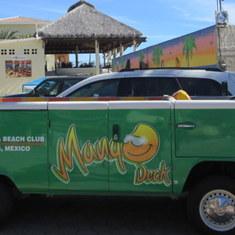 Cabo San Lucas, Mexico - Mangos