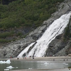 We took a Juneau Tours shuttle bus out to the Mendenhall Glacier ($14 per person there and back), an