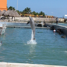 Costa Maya (Mahahual), Mexico - You can watch the dolphins at Costa Maya for free!