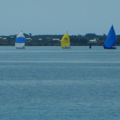 Beautiful bay full of colorful sailboats.