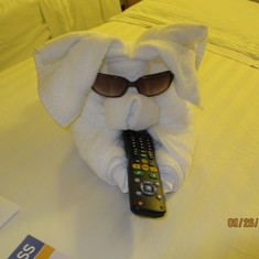 Towel animal poised to watch TV - thanks to our Cabin Steward, Kelvin Bobb