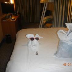 Room ready for sleeping