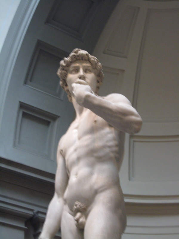 Michelangelo's David--Saw it before but never tire--Florence, Italy - Seven Seas Mariner