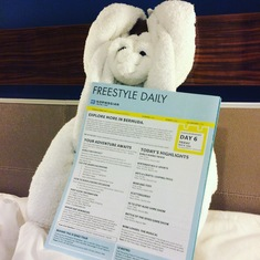 Towel monkey crafted by room steward