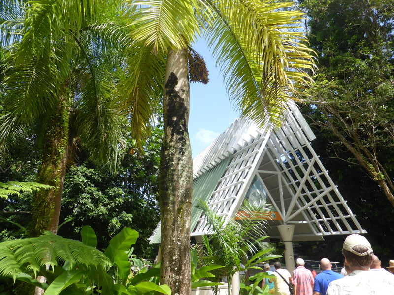 Rain Forest - El Yunque National Park Visitor Center - Carnival Dream