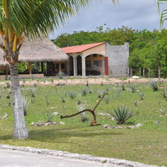 Agave Farm Tequila Tour, Cozumel