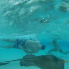 Grand Cayman, Stingray