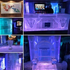 Ice Bar - they need to offer more drink options but it's really neat!