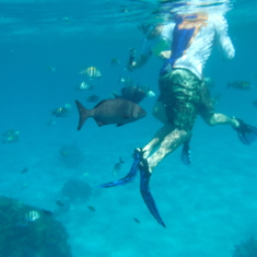 Snorkling with the fish in Cozumel