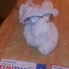 The rabbit is wearing my glasses. I found this very humerous.