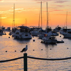 Catalina Island, California - Avalon