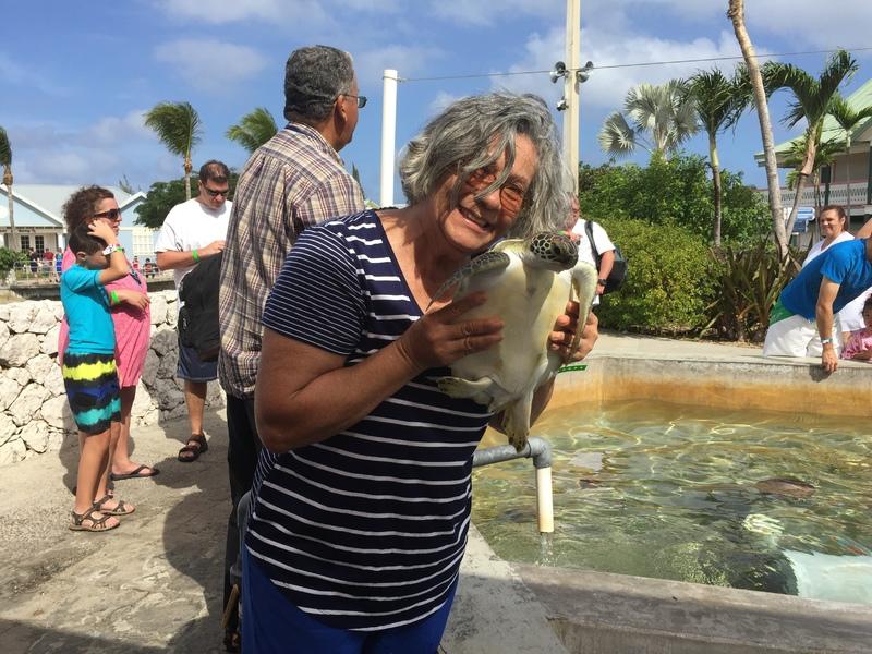 Turtle Farm @ Cayman Island - MSC Divina