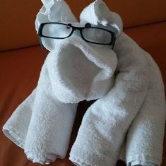 puppy towel art with my glasses