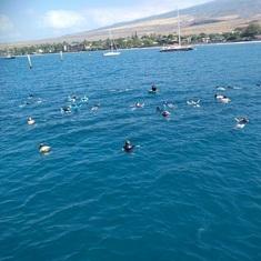 Lahaina, Maui - snorkeling, Maui
