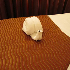 Snail Towel Art