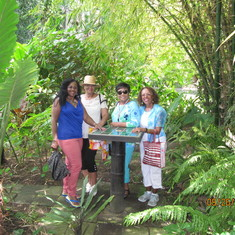 Amidst the lush foliage of Wingfield Estate in St. Kitts