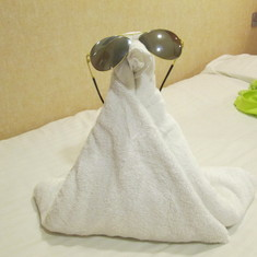 one very cool towel animal
