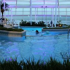 Solarium pool(s)