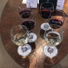 The small wine tasting