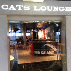 Cat''s Lounge on Carnival Fantasy