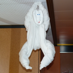 The towel monkey I asked my stewards to leave all week.