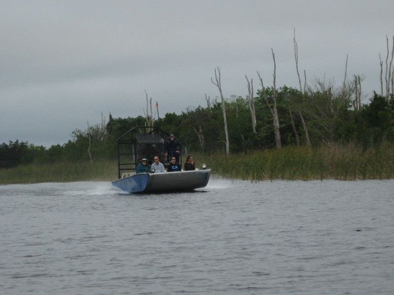Airboat on the fly--We took Everglade airboat excursion - Coral Princess