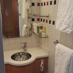sink with shower room