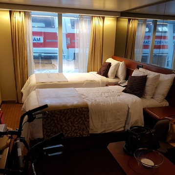 Large Oceanview Stateroom (Fully Obstructed View) on Nieuw Amsterdam