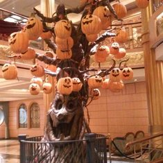 Guest Services/Shore Excursions on Disney Fantasy