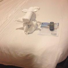 a towel creature
